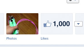 KippingItReal 1000 Facebook Likes